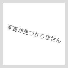 画像9: 【TURN ME ON ®】3WAY ハンドメイドレザーウォレット(YELLOW / CAMELステッチ) (9)